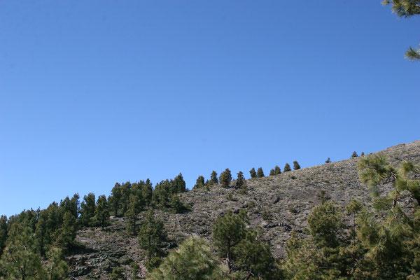 Aufstieg zum Pico de la Nieves