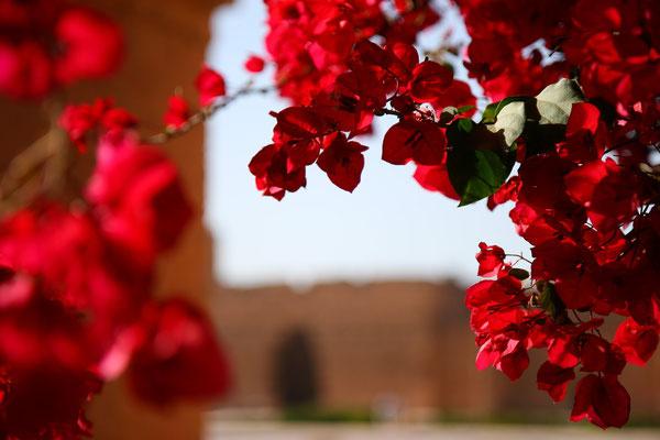 Jeweils im Juni findet in den Ruinen alljährlich ein buntes Folklorefestival statt