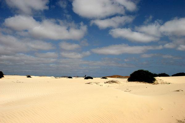 Deserto de Viana - die Sanddüne erstreckt sich in nordöstlicher Richtung