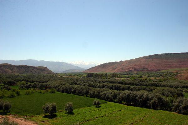 Das Atlasgebirge bildet zwei sehr unterschiedliche Klimazonen und prägt ganz entscheidend die Landschaft, genauso wie das Klima.