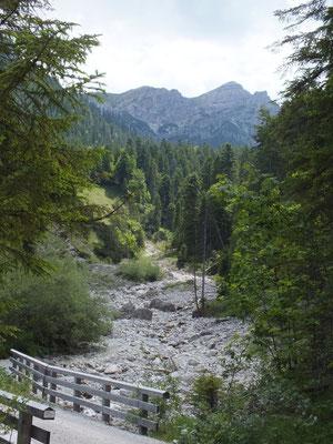 Forstweg Richtung Fischbachalm, über eine Holzbrücke