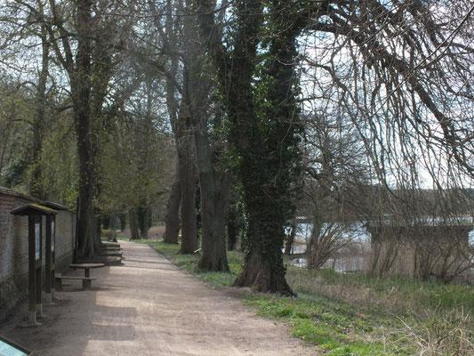 Ostufer, unterhalb des Klosters