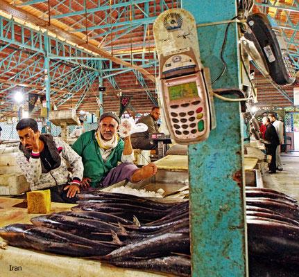 Fischmarkt in Bandar Abbas (Iran)