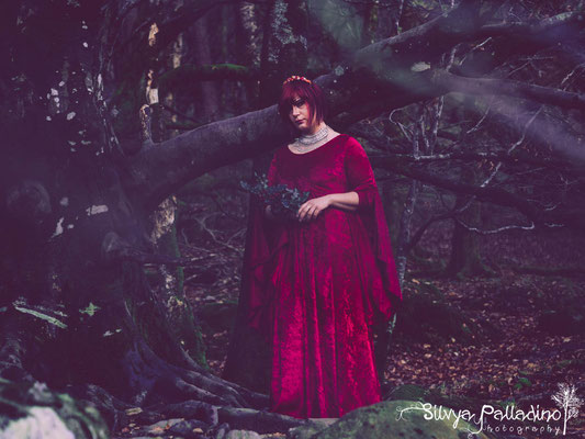 pagan celtic photography - Druid
