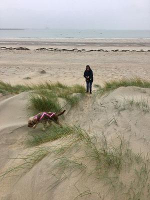 zogen durch die Dünen ...