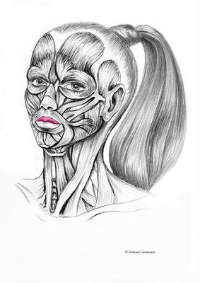 27. Auspolsterung der Lippen auf natürliche Weise.