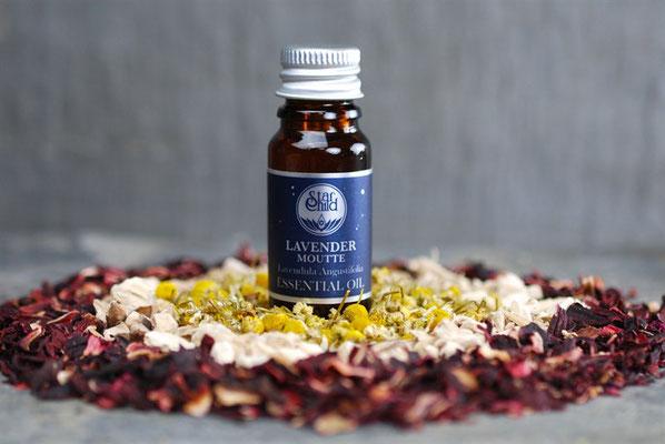 Lavendula angustifolia (Moutte Lavendel) 10ml CHF 20.00