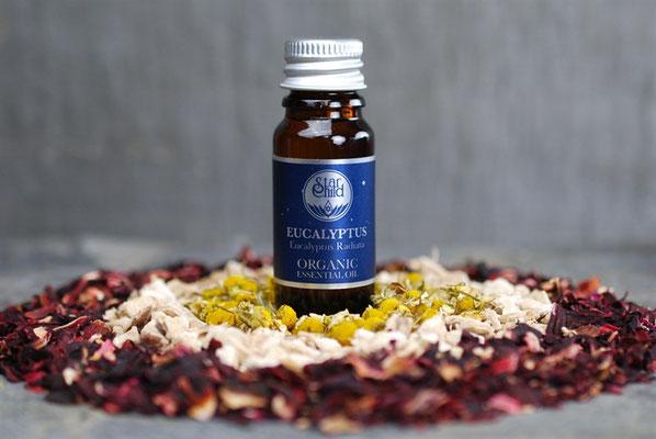 Eucalyptus radiata (Eukalyptus Organic) 10ml CHF 15.00