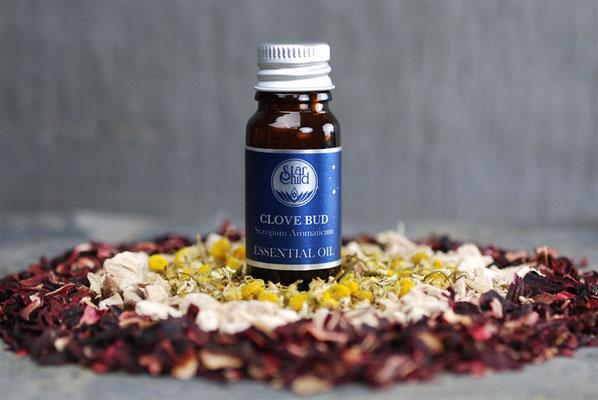 Syzygium aromaticum (Nelkenknospe) 10ml CHF 16.00