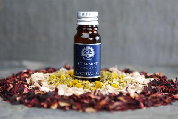 Mentha spicata (grüne Minze) 10ml CHF 17.00