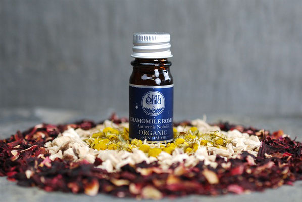 Chamaemelum nobile (Römische Kamille Organic - früher bekannt als Anthemis nobilis) 5ml  CHF 31.00