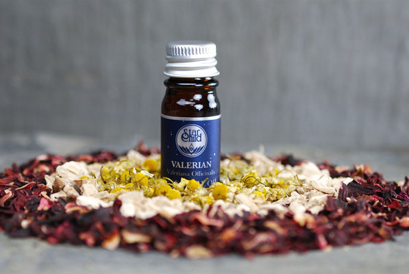 Valeriana officinalis (Baldrian) 10ml CHF 35.00