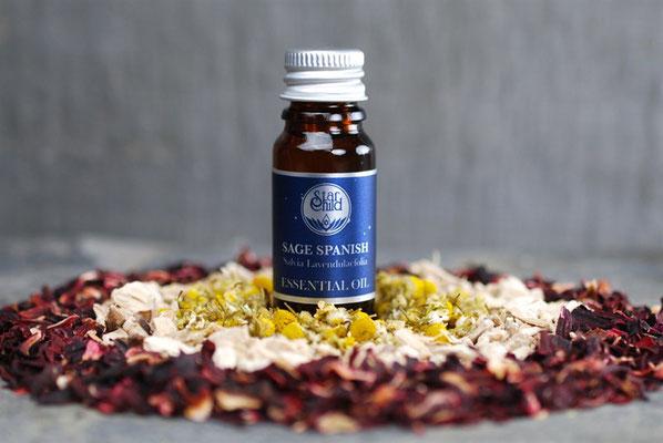 Salvia lavendulaefolia (spanische Salbei) 10ml CHF 17.00