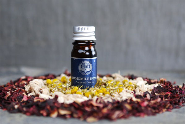Chamaemelum nobile (Römische Kamille) 5ml CHF 25.00