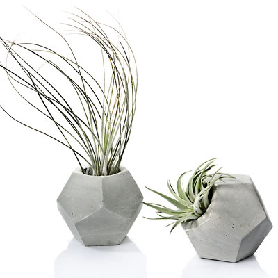 Concrete Table & Room Decor