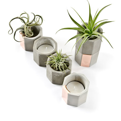 Concrete Copper Hexagon Tea Light Candle Or Air Plant Holder