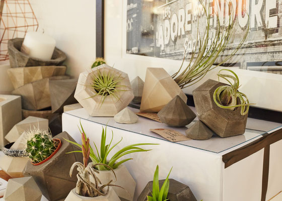 Concrete Bowls and Planter by PASiNGA, image by Yeshen Venema