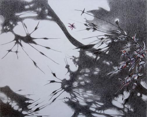 Schatten kleine Pflanze | 2020 | Bleistift / Tusche auf Papier auf Holz | 20 x 25 cm