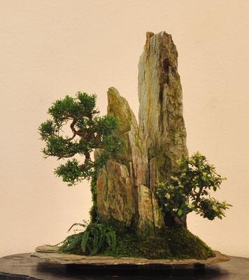 Composizione su roccia di Franco Bergamini