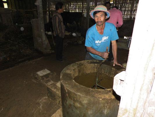 Mestbak voor biogas