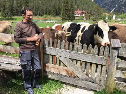 Der Hirte Franz und seine anvertrauten Kühe