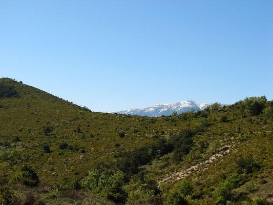 Du col de Milmandre : le Ventoux