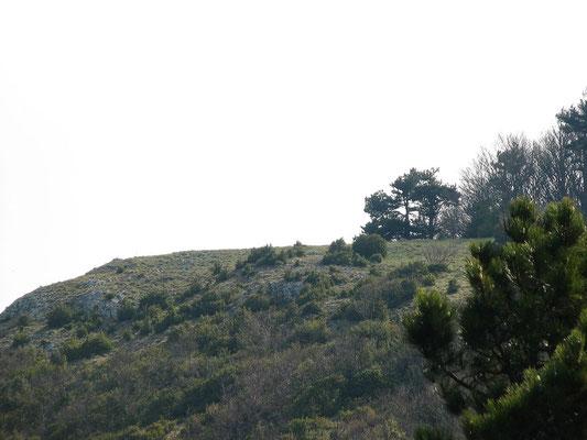 le sommet Du Grd Pomerolle
