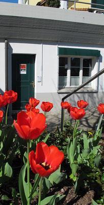 Gesangsschule in Waltenschwil, Eingang