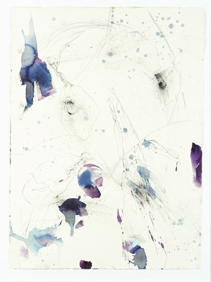 Hubert Scheibl, Claviceps purpurea, 2011/12, Aquarell