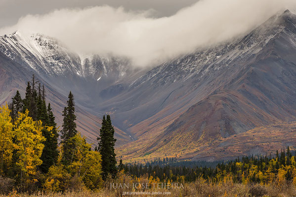 Kluane National Park.