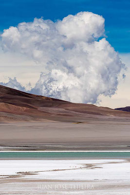 Laguna Diamante, Antofagasta de la Sierra, Catamarca.