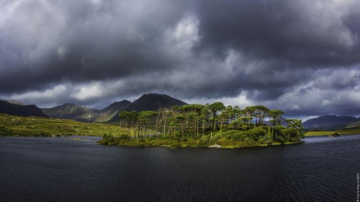 Pine Island Derryclare Lough Ireland