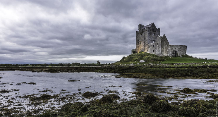 Dunguaire castle Kinvara Ireland