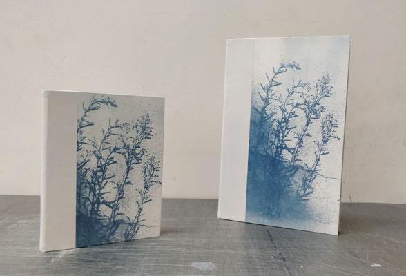 Livres blancs ou livres d'or, reliure traditionnelle 1/2 peau et cyanotype en couverture