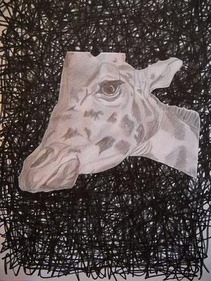 o.T, 2009, 29,7 x 21 cm, Bleistift, Edding, Papier-Ausschnitt, Kleber auf Papier