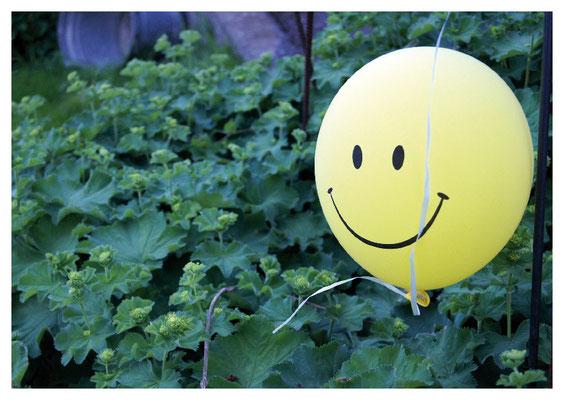 Smilyballon auf Frauenmantel Nr. 33