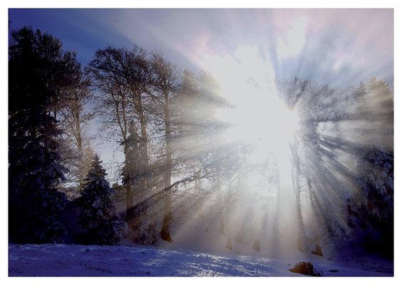 strahlendes Winterlicht Nr. 126