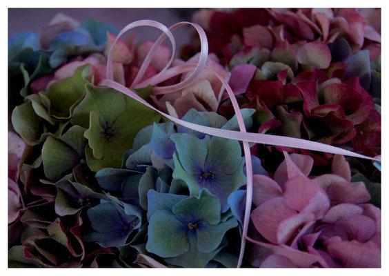 Hortensienkranz mit rosa Band Nr. 99