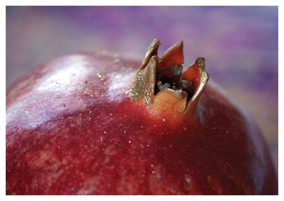 Granatapfel Nr. 132