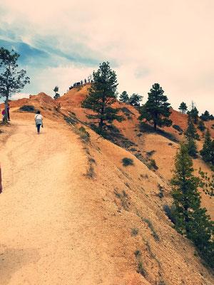 Bryce Canon Navajo und Queens Garden Trail