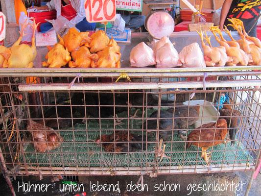 Klong Toey Markt Hühner