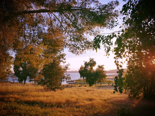 Millerton Lake Meadows Campground