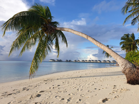 Amari Havodda Malediven Strand