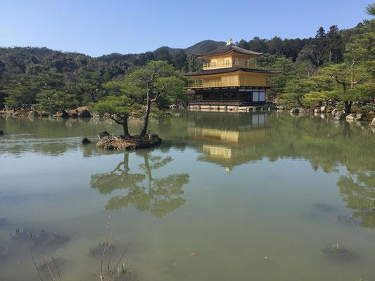 Japan, Kyoto, Goldener Tempel