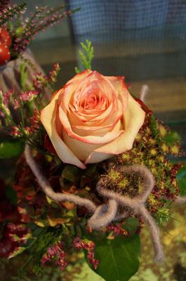 Herbsliche Rose
