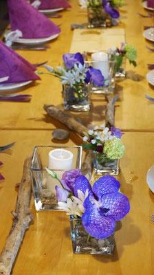 Vanda-Orchidee - ein echter Hingucker