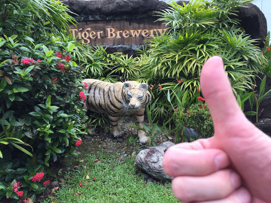In der Tiger Brewery