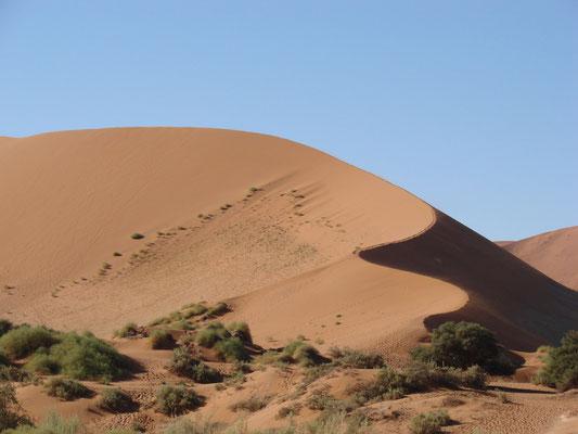 Einfach fantastisch die Dünen von Sossusvlei