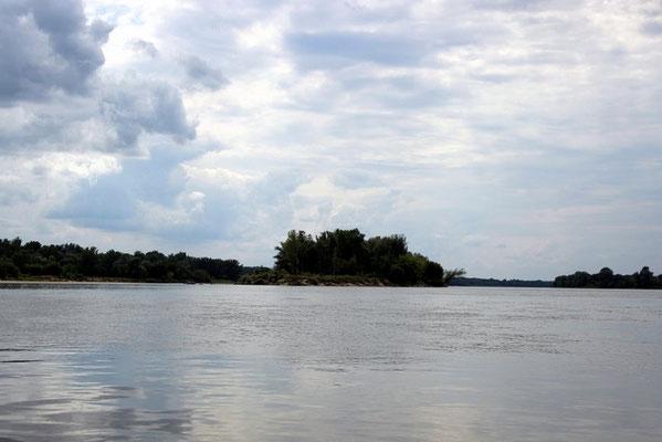 Eine der unzähligen Inseln im Fluss