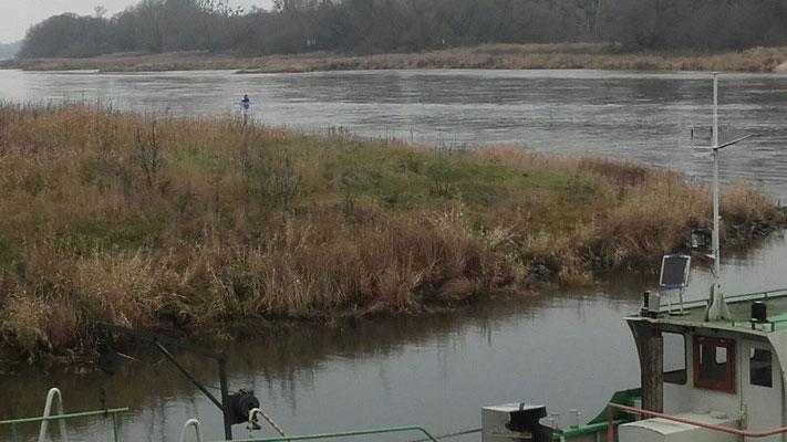 Ein einsamer Wassergleiter von der fast-bis-Brambach-Inspektion auf Rücktour